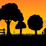 Вопросы земельных отношений
