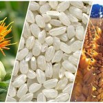 В Приаралье диверсифицируют сельское хозяйство