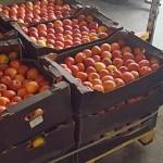 Бизнесмены опасаются ввоза в Казахстан заражённых овощей и фруктов