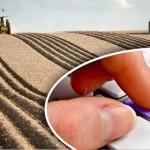 В МСХ РК предлагают ввести единый аграрный налог на землю
