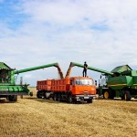 Большой урожай зависит от хороших вложений