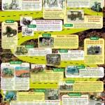 Инфографика «История развития тракторостроения»