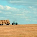 Итоги опроса: К чему, на ваш взгляд, приведёт тотальная кооперация ЛПХ в Казахстане?