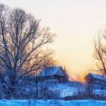 6 зимних забот агрономов