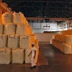 Индекс цен на продовольствие ФАО в ноябре снизился на фоне зернового бума