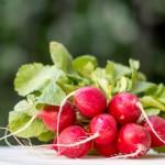 Первая вертикальная ферма в ОАЭ похвасталась урожаем микро-зелени