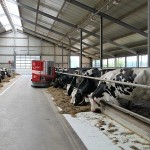 Қазақстанда робот фермаларының саны артып келеді