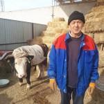 Как сельчане в Жамбылской области занимаются бизнесом