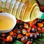 Как пальмовое масло угрожает населению и экономике Казахстана