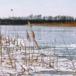 Высокая паводковая опасность сохраняется в ряде регионов Казахстана