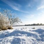 Казахстан: 2018 год бросает очередной вызов аграриям