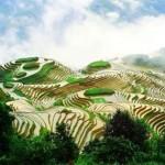 Названы новые уникальные объекты сельскохозяйственного наследия