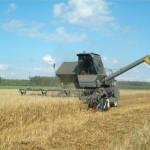 Может ли наше КХ получить субсидии на зерноуборочный комбайн при минимальных площадях?