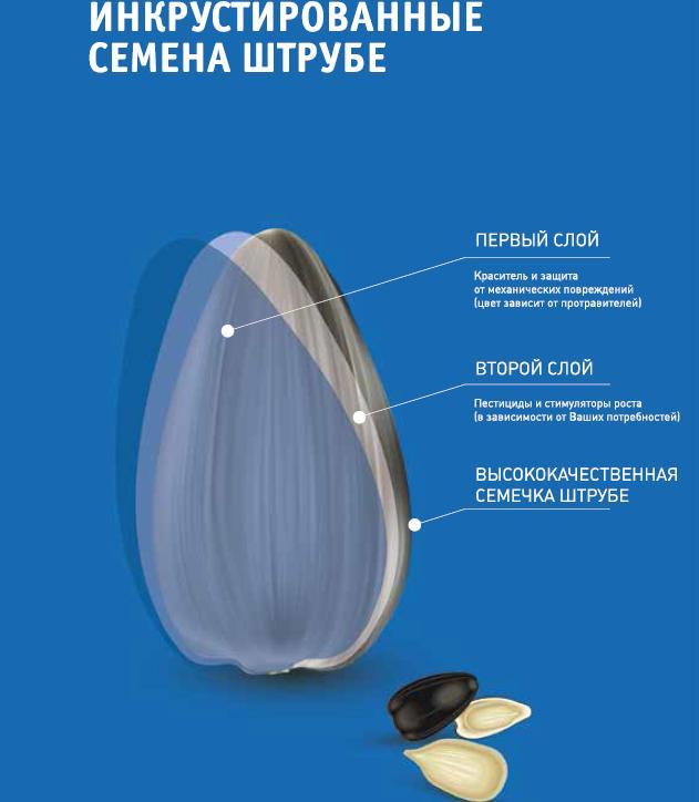 Фото: agro2b.ru / Нажмите для увеличения