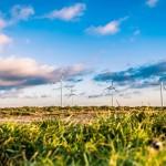 ФАО рекомендует внедрять новые технологии в сельском хозяйстве