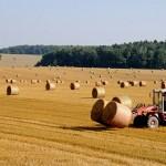 Гражданские активисты призвали рационально использовать сельхозземли