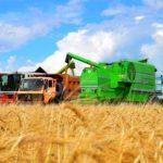 У меня инвестор из Европы. Могу ли я получить субсидии на сельхозтехнику и растениеводство?