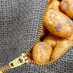 Почему картофель в скором времени подорожает в Северном Казахстане