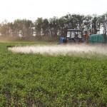 «Август» повышает урожай почти на 4 ц/га
