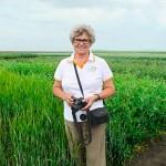 Баковые смеси на зерновые – выгодно