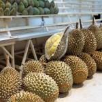В Таиланде начался сезон сбора и поедания дурно пахнущего фрукта