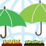 В Казахстане внедрено индексное агрострахование