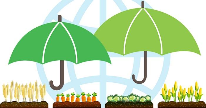 Иллюстративный коллаж: АгроИнфо / Фото: pixabay.com