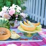 Можно ли покупать арбузы и дыни в июне