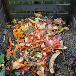 В компост будут превращать пищевые отходы в Астане