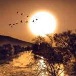 Сельскохозяйственные загрязнители – серьёзная угроза мировым водным ресурсам