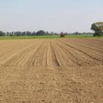 В сёлах Костанайской области вновь появятся земельные инспекторы