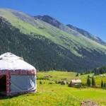 Более 2,5 миллионов га лесных насаждений будет восстановлено в рамках Боннского соглашения в странах Кавказа и Центральной Азии к 2030 году