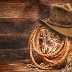 Появятся ли в Казахстане свои «ковбои»?