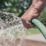 Жамбылские крестьяне испытывают острый дефицит поливной воды