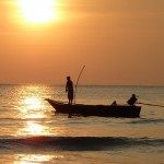 Изменение климата ударит по рыбному хозяйству к 2050 году