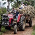 Бедные страны сталкиваются с растущей стоимостью импорта продовольствия