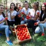 Финалистка конкурса «Мисс Вселенная» приняла участие в первом агро-туре Енбекшиказахского района