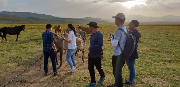 Разработчики тестируют решение на пастбище в Казахстане / Фото: news.samsung.com/kz_ru