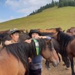 Samsung и корейская команда Lives'talk помогут казахстанским фермерам находить свой скот