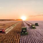 Почти в два раза сократят сельскохозяйственные НИИ в Казахстане