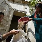 ФАО вновь поднимает вопрос поддержки семейных фермерских хозяйств