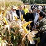 На Дне поля в Алматинской области обсудили инновационные технологии в производстве кукурузы