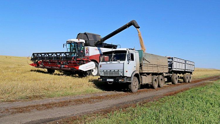 Уборка пшеницы в ТОО «Ак-Жер 2010» / Фото: ©ТОО «Август-Казахстан»