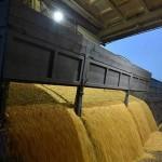 Мировые цены на продовольствие снизились в октябре