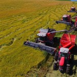 Жасулан Сериков: «Увеличен объём субсидий на рисовые комбайны»