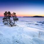 Прогноз погоды на 13 декабря: осадков не ожидается на большей части страны