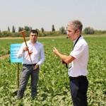 Особенности внедрения систем питания для сельскохозяйственных культур от «ЕвроХим»