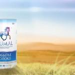 Детское питание из кобыльего молока будут производить в Карагандинской области
