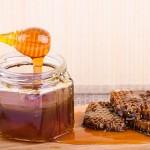 Не имеющий аналогов мёд производят в Жамбылской области