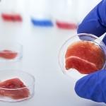 Способ проверки свежести мяса разработали учёные Казахстана и Швеции